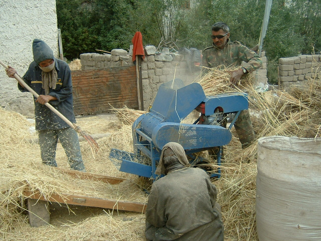 The new threshing machine: Ladakh 2007